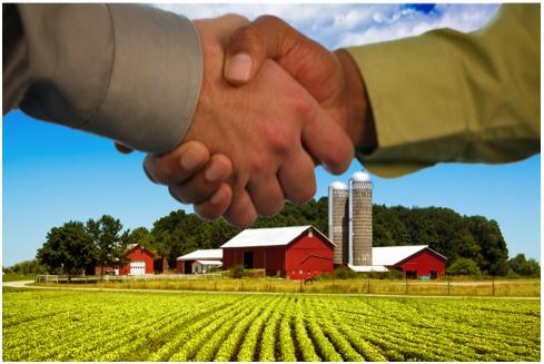 handshake farm